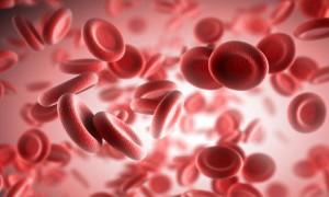 у ребенка повышенное содержание эритроцитов в крови - фото 7
