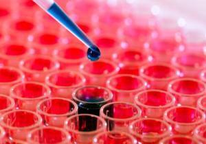 уровень лейкоцитов в крови мужчин
