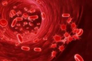 Повышенное содержание тромбоцитов