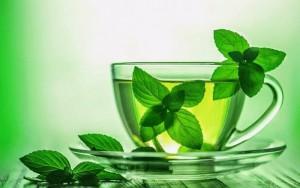 чай из листьев мяты