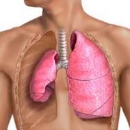 Жидкость в легких: причины и лечение в зависимости от степени заболевания
