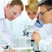 Что показывает иммунограмма и какова расшифровка результатов исследования?