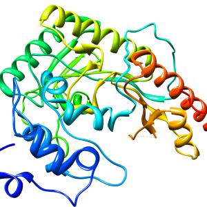 креатинкиназа