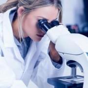 Как сдают мазок на степень чистоты? Нормы у женщин в таблице.