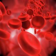 2 отрицательная группа крови: характеристики мужчин и женщин