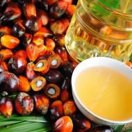 Пальмовое масло – друг нам или враг?